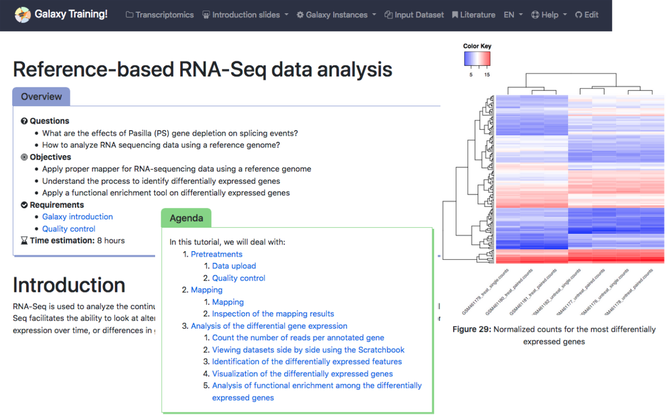 Reference based RNA-seq overview