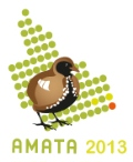 AMATA early career researcher workshop