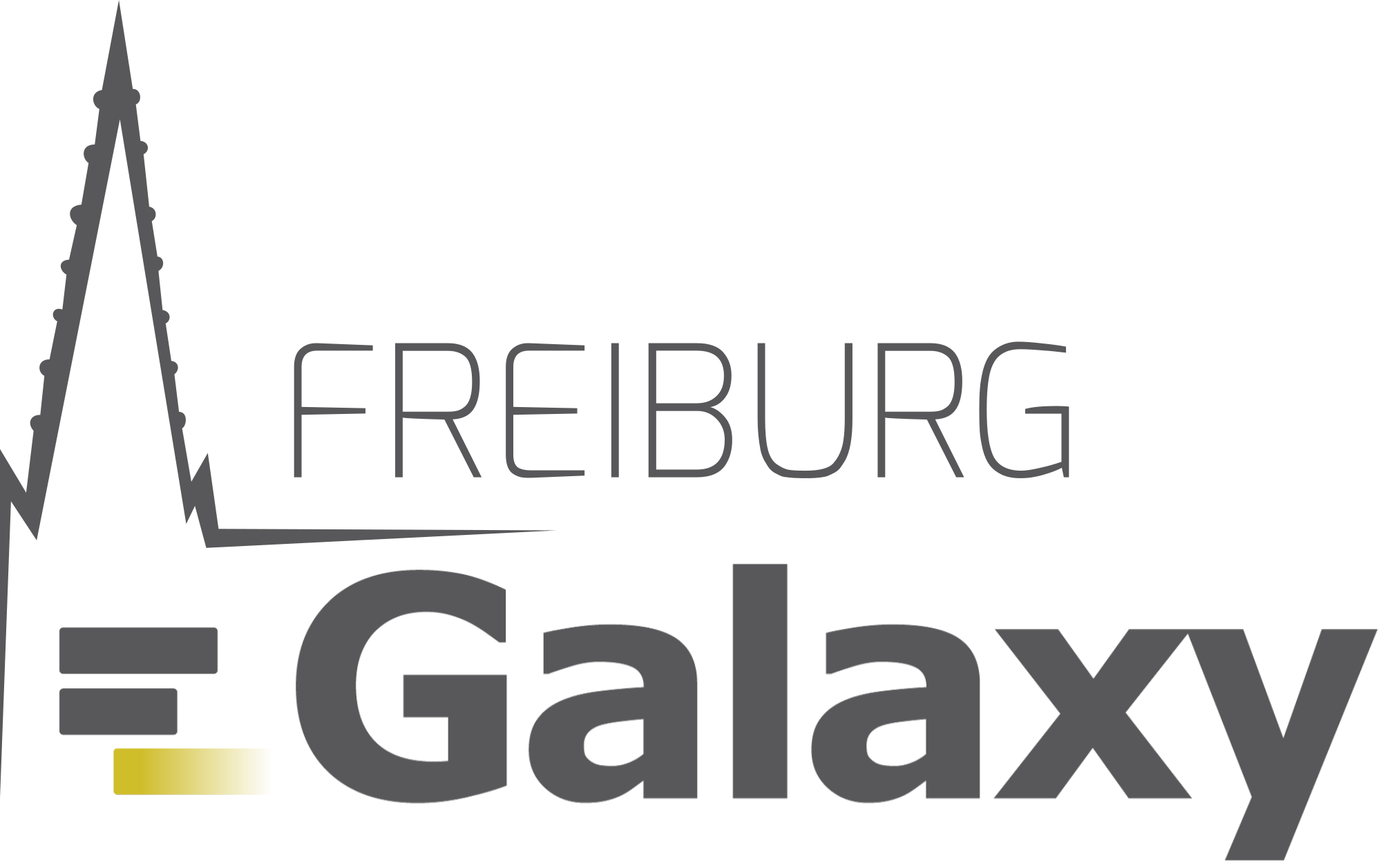 Galaxy Freiburg Project