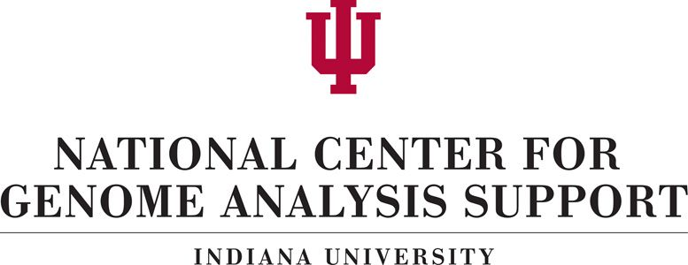 National Center for Genome Analysis Support (NCGAS)