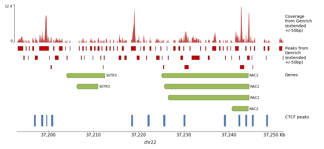 pyGenomeTrack output