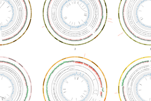 CTMM-TraIT Demo Galaxy